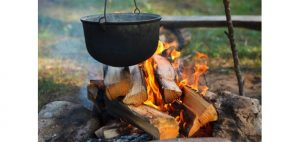 campfire_cooking_425